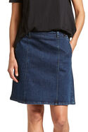 Dena Denim Skirt